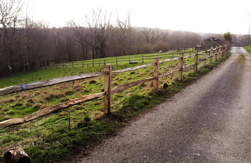 chestnut-post-rail-fencing-4