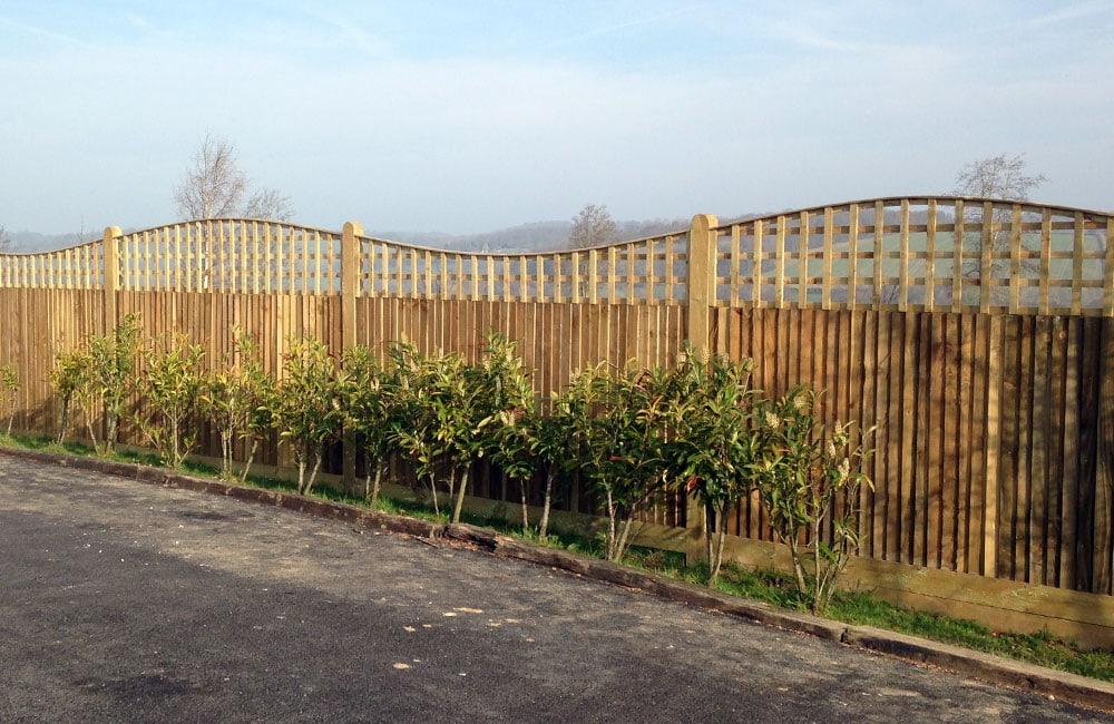 closeboard-fencing-with-trellis-2
