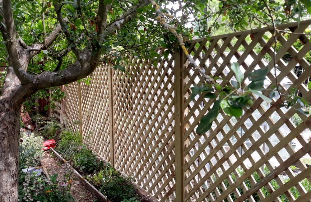 heavy-framed-diamond-hole-trellis-panels-2