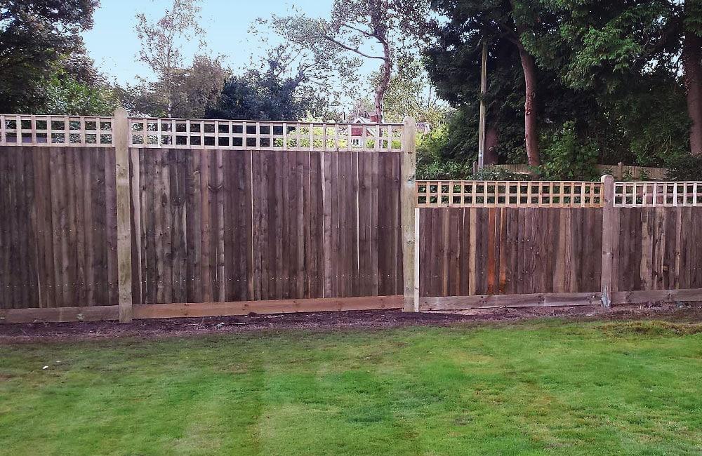 closeboard-fencing-with-trellis-4