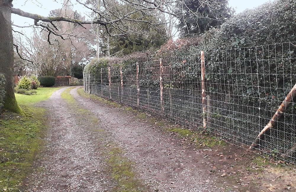 deer-netting-fencing-kent-2