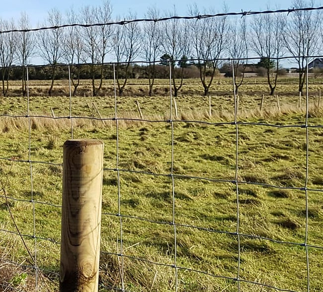 stock-fencing-kent