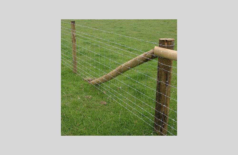 stock-netting-fencing-kent-3