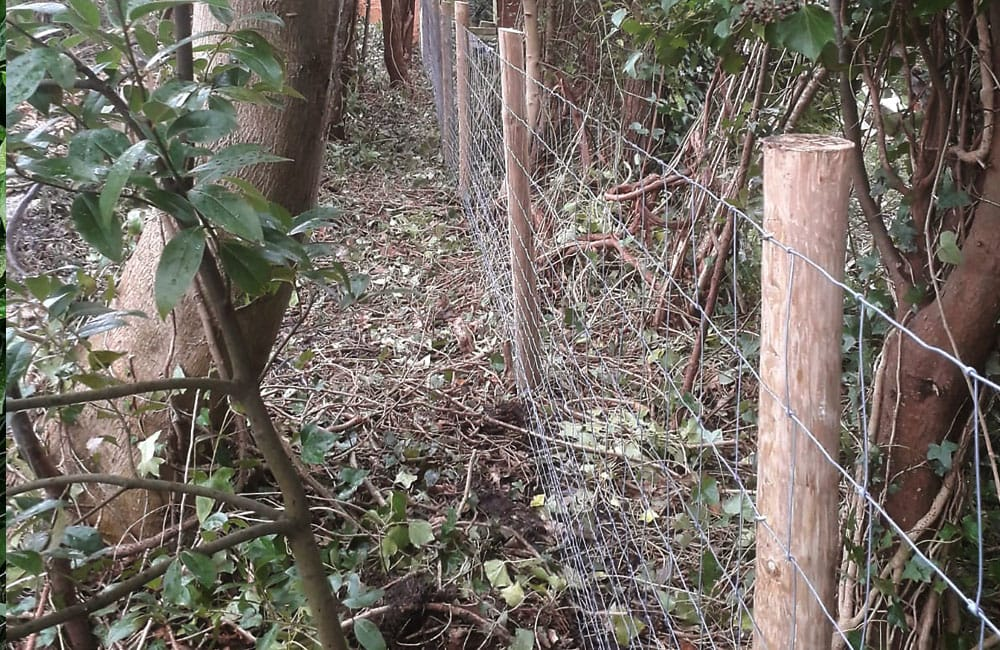 stock-netting-fencing-kent-6