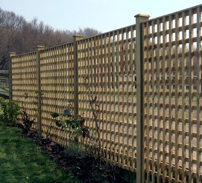 trellis-panel-fencing-kent
