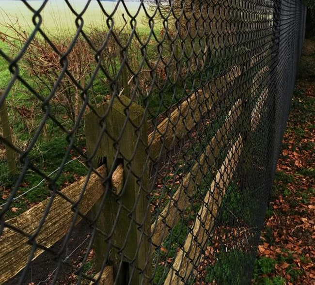 chain-link-fencing-kent-south-east
